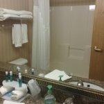 Holiday Inn Express New Buffalo Foto
