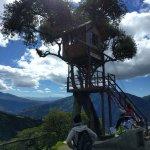 Foto de Casa Del Arbol
