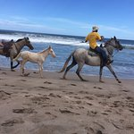 Often you will see people riding horses along the beach