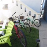 Grassy sitting area outside room/ three of the free bike rentals we used
