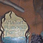 Amazon River Exhibit