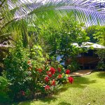 Perfect to base your trip at when visiting Vava'u. Neiafu town, wharves, eatouts, banks all walk