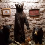 Photo de Three Bear Restaurant