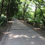 Photo de Inokashira Park