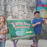 Photo de Turtle Bay Bakery & Cafe