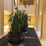 Corridor to rooms.
