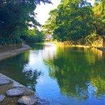 環境相當清幽寧靜,池邊景致讓人忘卻塵囂。