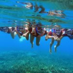 Discover the under water warld