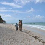 Photo de Bahari Dhow Beach Villas