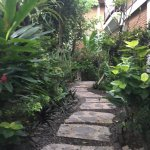 Un superbe jardin