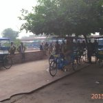 Rickshawala at Entry Gate of Keoladeo National Park - They have good  Knowaldge about tBirdirds