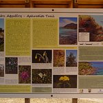 Photo of Aphrodite Trail