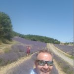 Touring the Lavender with EXPERIENCE PROVENCE