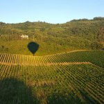Sunrise throws our shadow on the Tuscan vineyards