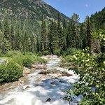 Loop Brook Trail