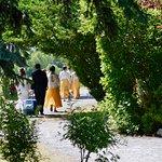 Wedding at Fish Creek Park