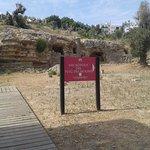 Foto de Necrópolis del Puig des Molins