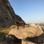 Foto de Morro Rock