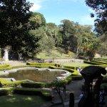 Foto de Jardim Botânico de São Paulo