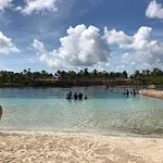 Photo of Dolphin Cay
