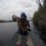 Small mouth bass on Bloom