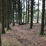 Bastogne is a great place for WW2 Museums, food and fox holes!