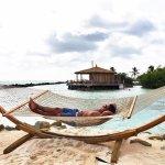 Hammocks on Flamingo Beach (private island)