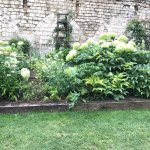 The tranquil garden outside the church