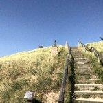 Dune in Egmond