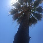 Sun Beach Resort Complex Foto