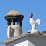 The rooster may not be real but the chimeneas (chimney) is.