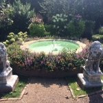 This is the fountain in the garden. So pretty.