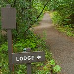 This way to Glacier Bay Lodge