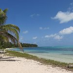 Half Moon Caye Beach - not a bad way to spend a surface interval.