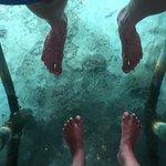 Photo of Lily Beach Resort & Spa