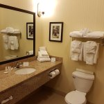 Foto de Comfort Suites Hotel & Convention Center Rapid City