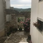 Photo of Hilltop Walled Ancient City of Motovun
