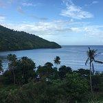 Fish Tobago Tours Foto