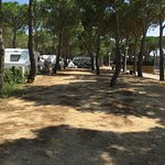 Photo of Camping Sandaya Cypsela Resort