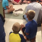 Our kids learning about snakes!