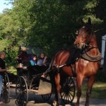 Amish in the Campground