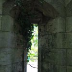 An ivy covered window in a tower near Lendal Bridge