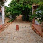 Foto de Jain Farms