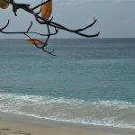 Photo of Princess Margaret Beach