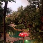 Bilde fra Kata Palm Resort & Spa