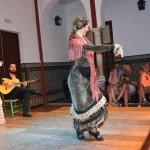 spectacel flamenco