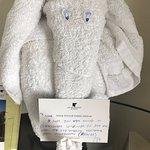 Cute elephant the room staff made for me.