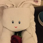 Hotel staff left cute towel sculptures on our bed :)