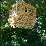 Upside down treehouse