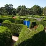 The maze- great fun for kids